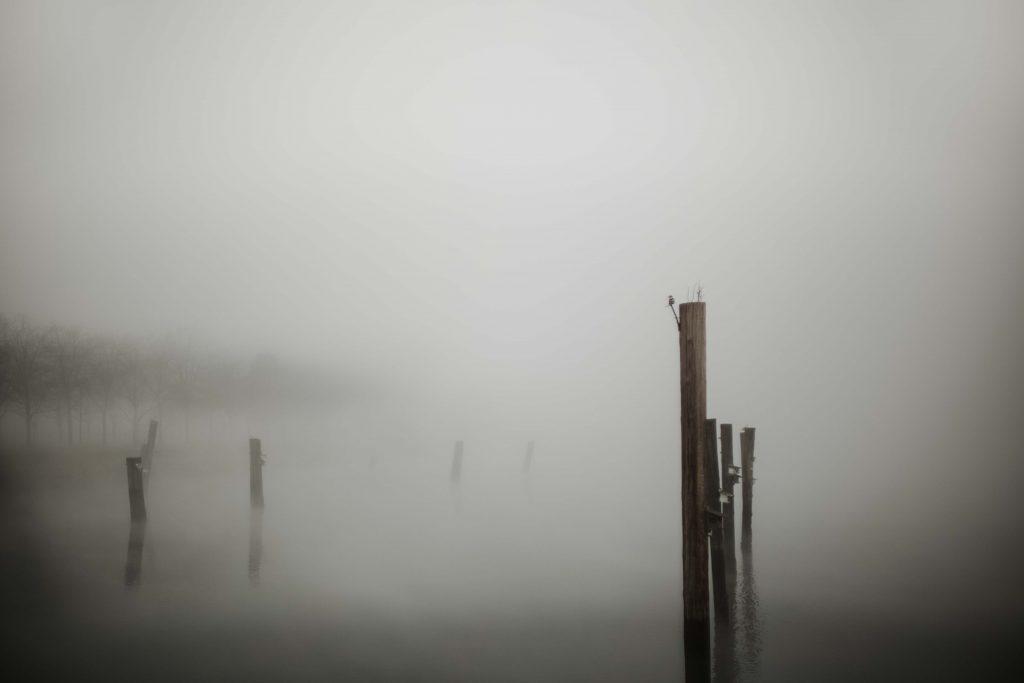 15-11-Olympia-Fog